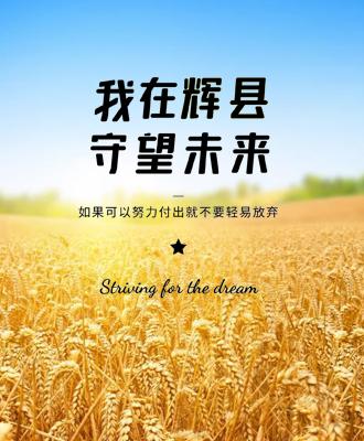 宣传片--辉县农商银行《我在辉县 守望未来》